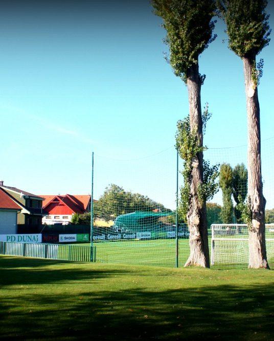 Zelená je tráva, futbal to je hra